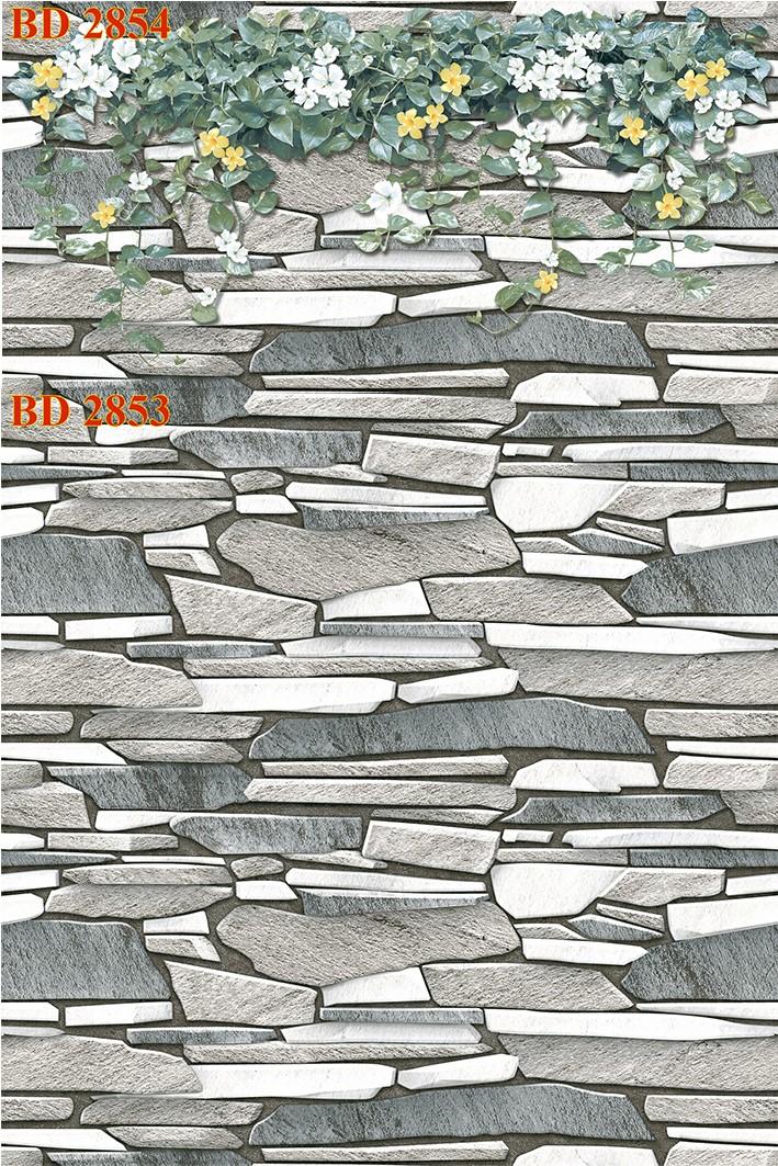 Gạch dán tường trang trí 30x60 Thanh Long BD 2853 - 2854