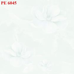 Gạch nền 60x60 PE 6045