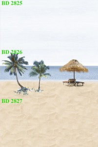 Gạch dán tường trang trí 30x60 Thanh Long BD 2825 - 2826 - 2827