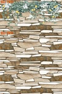 Gạch dán tường trang trí 30x60 Thanh Long BD 2851 2852