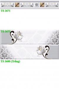 Gạch ốp 30x60 TS-3671-3672-3600 Thanh Long