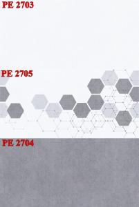Gạch ốp 30x60 PE-2703-2705-2704 Thanh Long