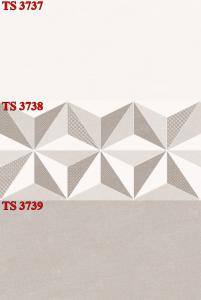 Gạch ốp 30x60 TS-3737-3738-3739 Thanh Long