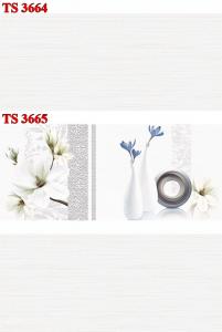 Gạch ốp 30x60 TS-3664-3665 Thanh Long