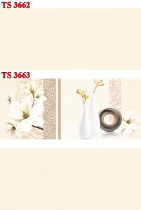 Gạch ốp 30x60 TS-3662-3663 Thanh Long